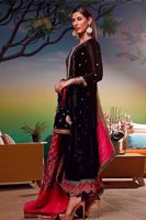 Picture of WL-28 Banarsi dupatta only